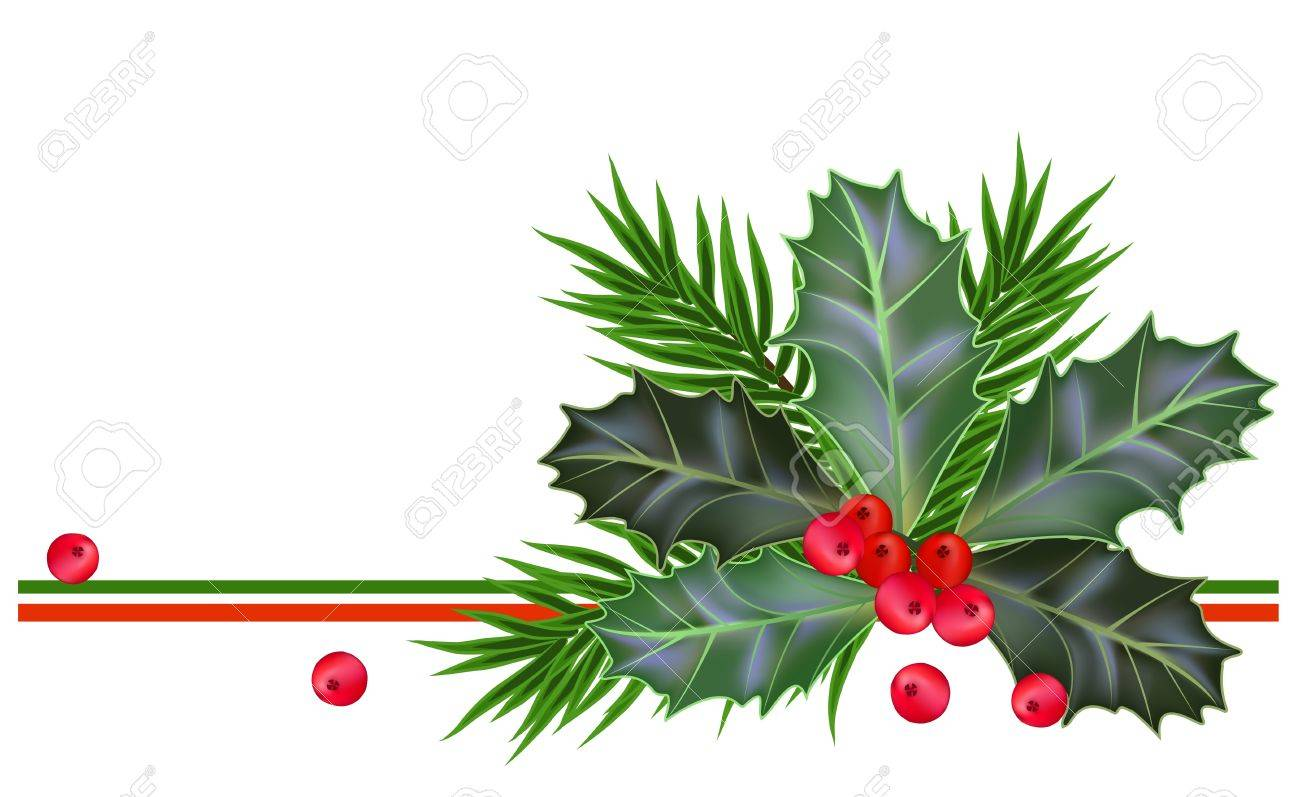 Christmas and New Year card with holly leaves and berries - 15556878