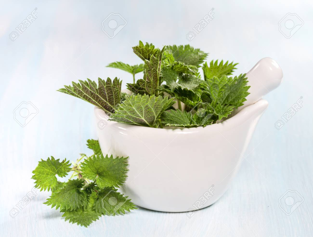 Fresh nettle leaves on a wooden table - 26620510