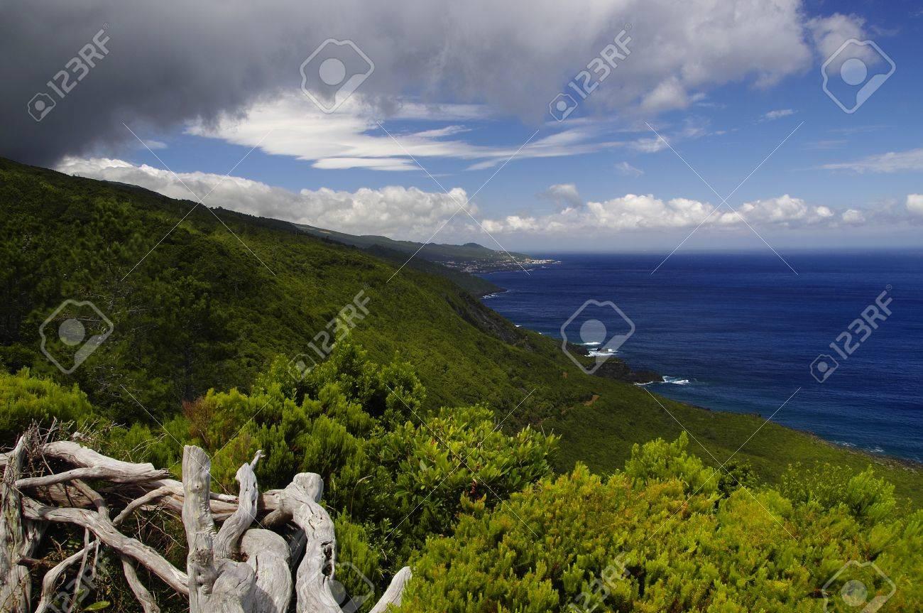 The coastline of Pico island, Azores - 14977277