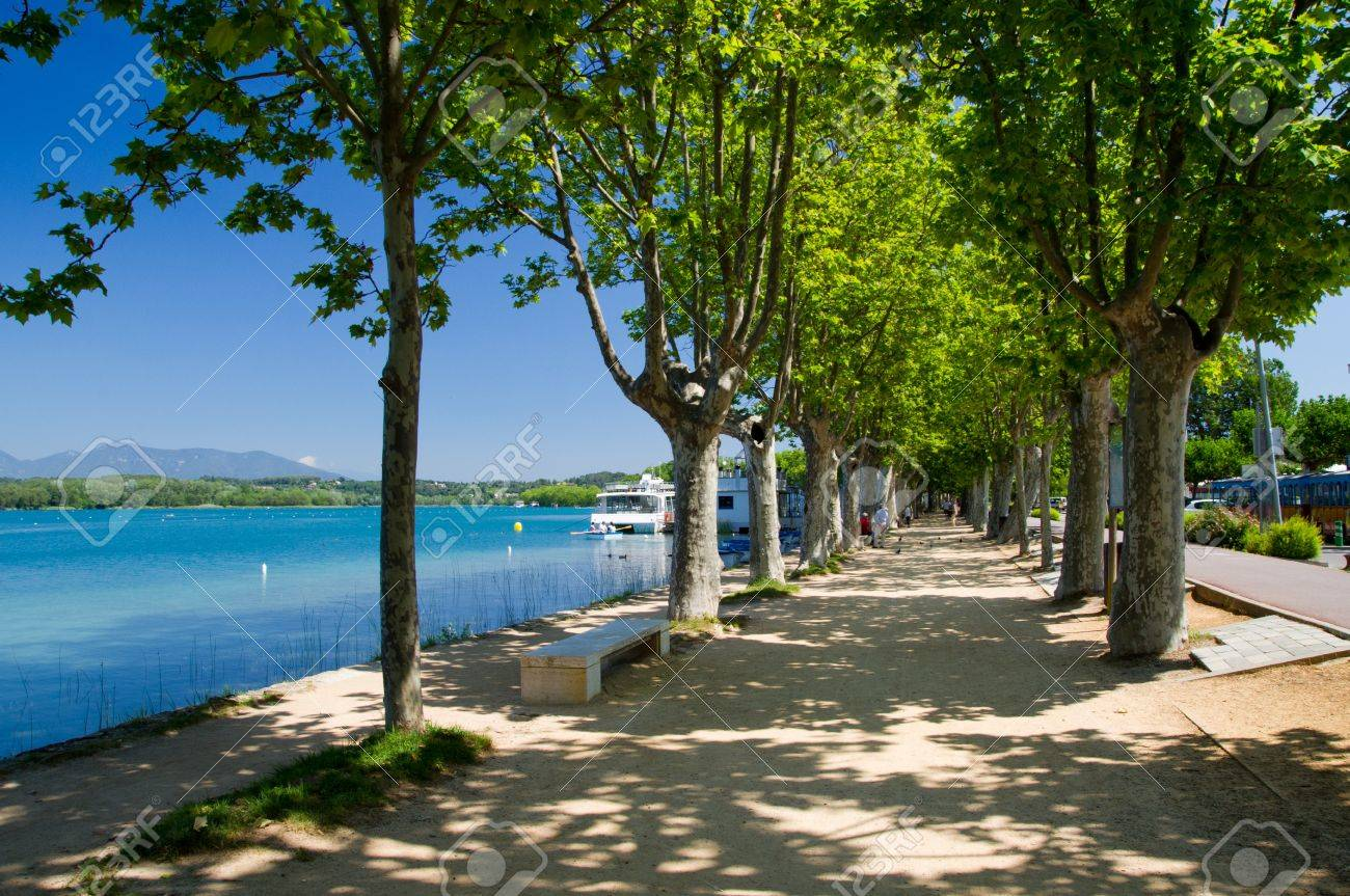 The alley of plane trees on the waterfront of Lake o Banyoles, Catalonia, Spain - 21003796