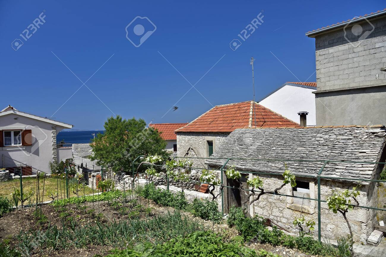 PRIMOSTEN, CROATIA - MAY 2, 2019 - Small house gardens and vineyards cultivated by inhabitants of famous and beautiful Primosten town in Dalmatia - popular tourist destination in Dalmatia. Croatia - 150570790