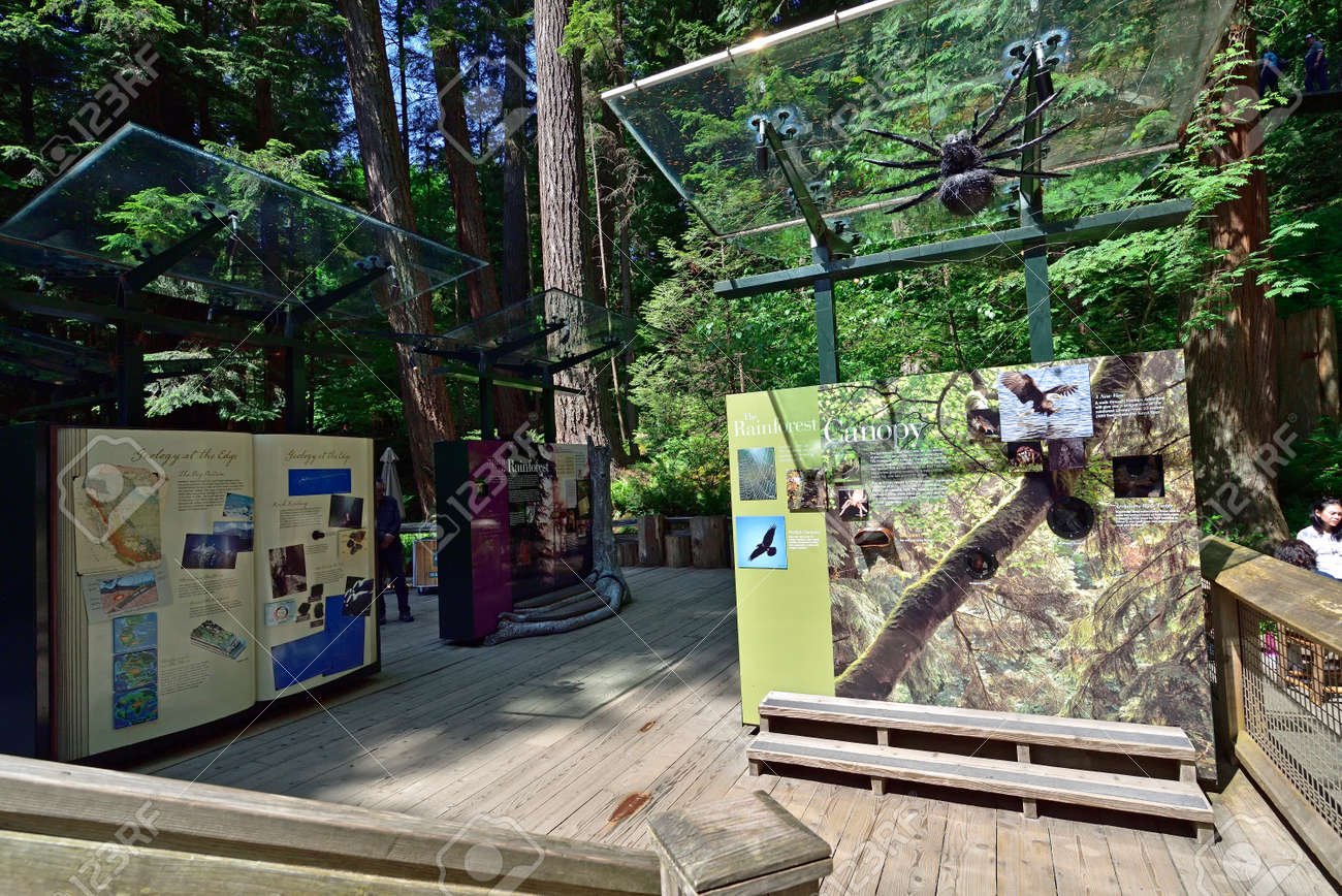 VANCOUVER, BRITISH COLUMBIA, CANADA, MAY 31, 2019: Visitors exploring outside exhibition of the Capilano River Regional Park in North Vancouver, Capilano is famouse for Suspension Bridge is 460 feet long and 230 meters above the river. - 160784263