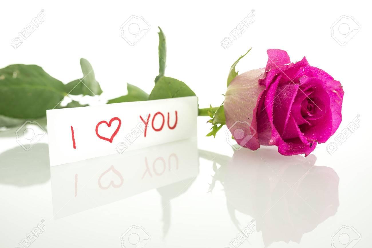 Handschriftliche Nachricht Ich Liebe Dich Mit Einem Einzigen Frischen  Schöne Rosa Rose Mit Blätter Liegen Auf