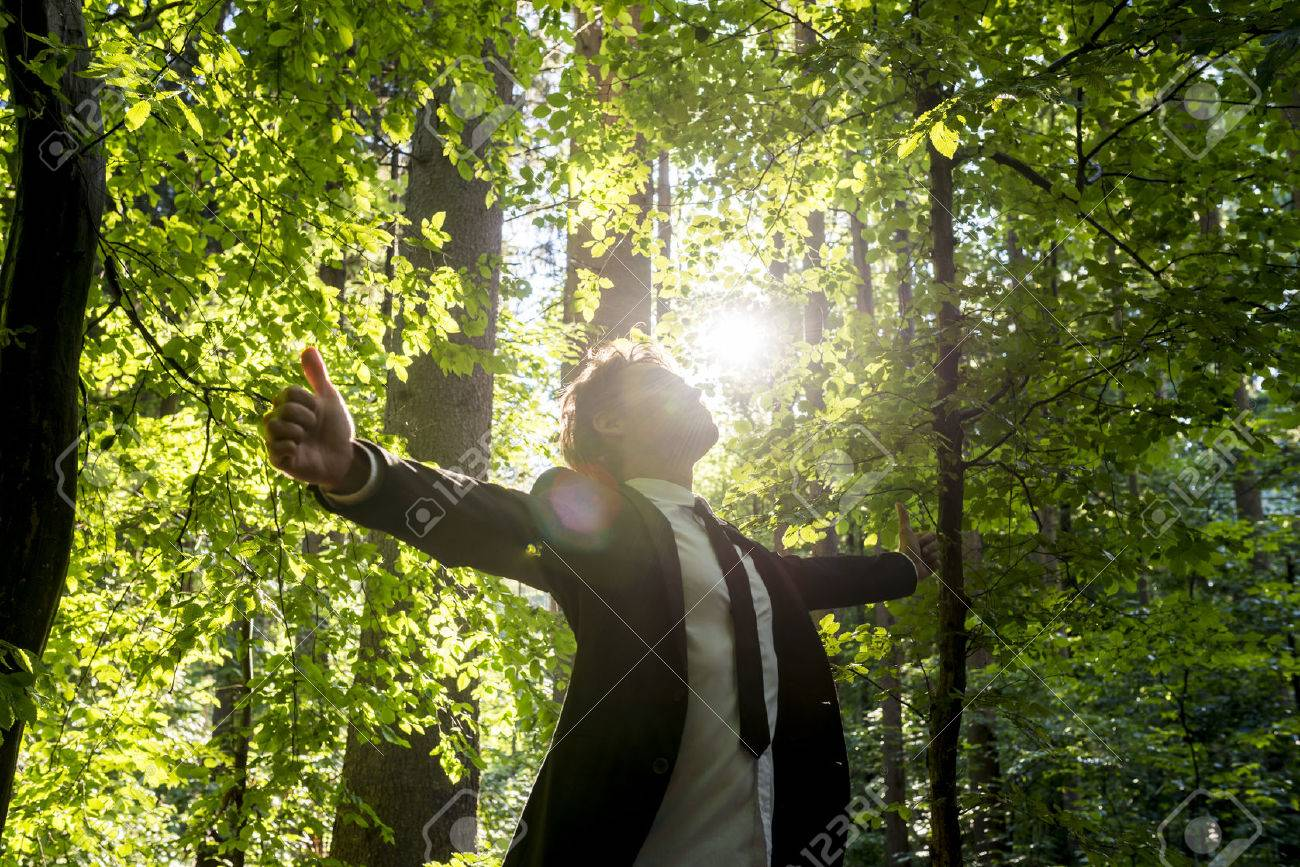 Businessman standing with his arms outspread showing thumbs up sign celebrating business success in woodland with fresh green leaves on the trees backlit by the rays of the sun, low angle view. - 42202098