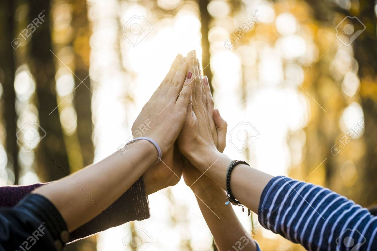 Closeup view of four people joining their hands together high up in the air outside in a forested area. - 48739037