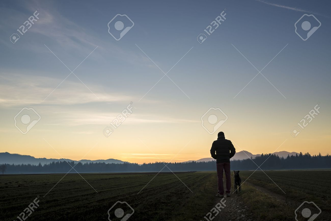 View from behind of a man walking with his black dog at dusk on a country road leading through beautiful landscape of fields with forest in the distance and beautiful evening sky above. - 51575439