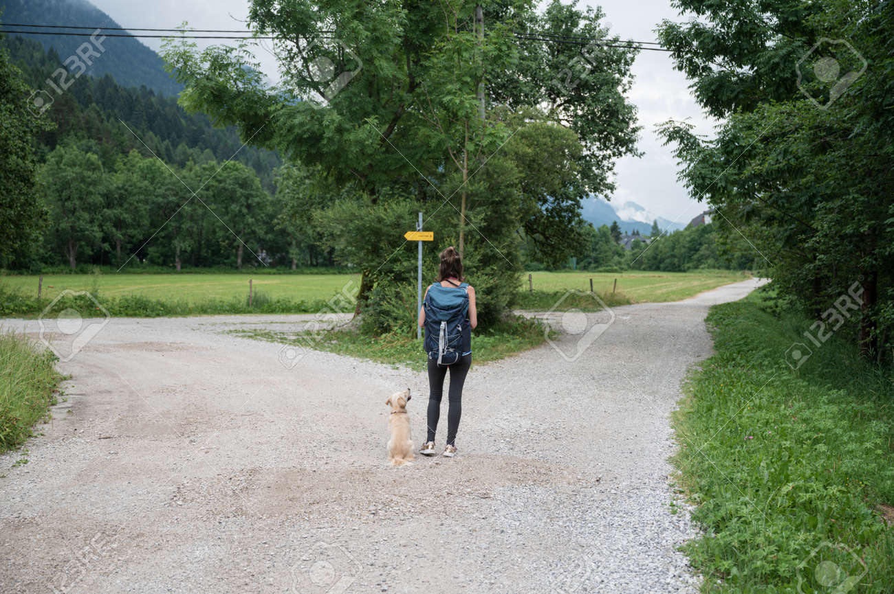 View from behind of a young woman with her dog standing at a crossing of trails in beautiful green summer nature, deciding which way to go. - 171620063