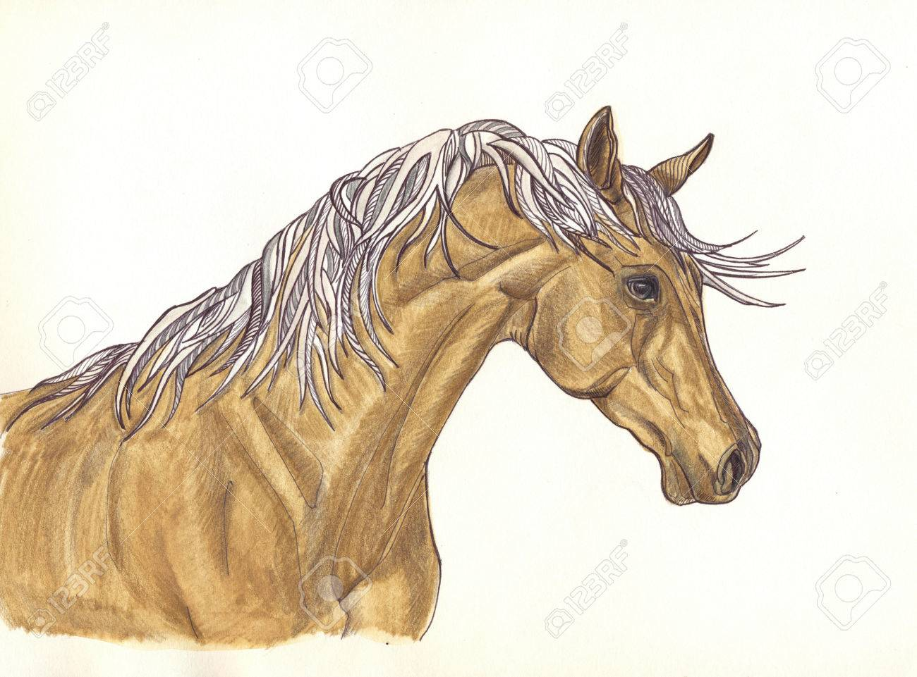A Beautiful Horse With Mane Of Decorative Design Painted With Stock Photo Picture And Royalty Free Image Image 48073435