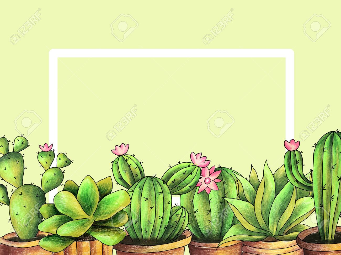 Decorative Frame Cactus In A Pot Drawing Hand Colored Pencils Stock Photo Picture And Royalty Free Image Image 155917403