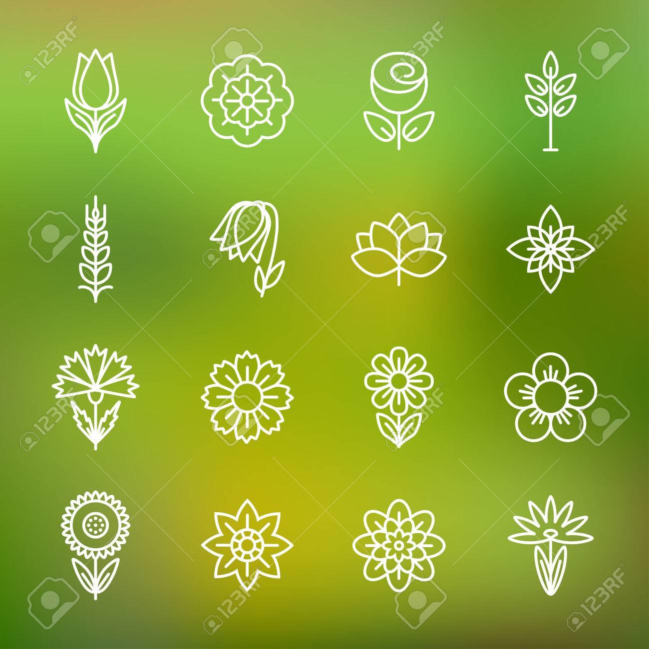 Iconos De Flores. Moderna Línea De Contorno Fino. Plantilla Para La ...