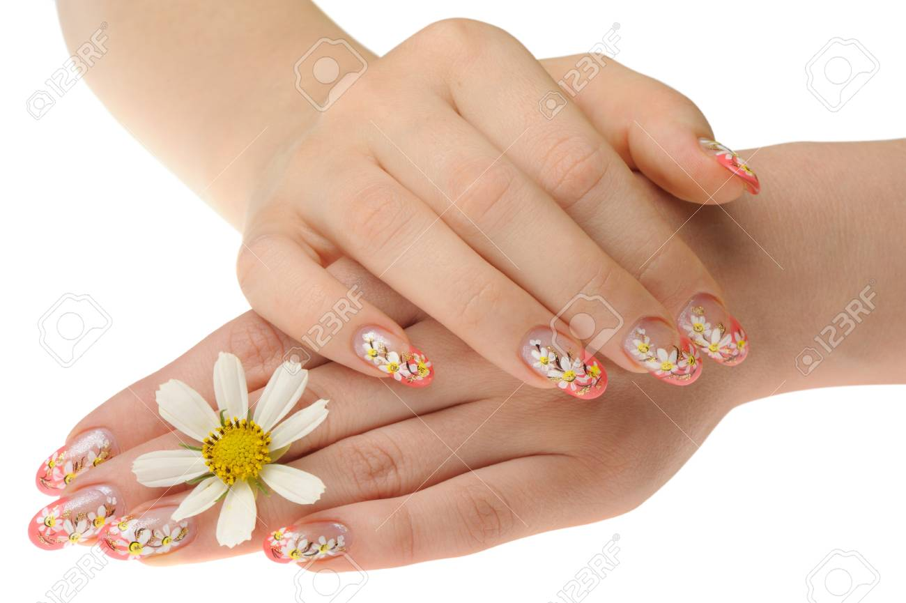 Female hand and flower. Nails with figure of a camomile Stock Photo - 7881197
