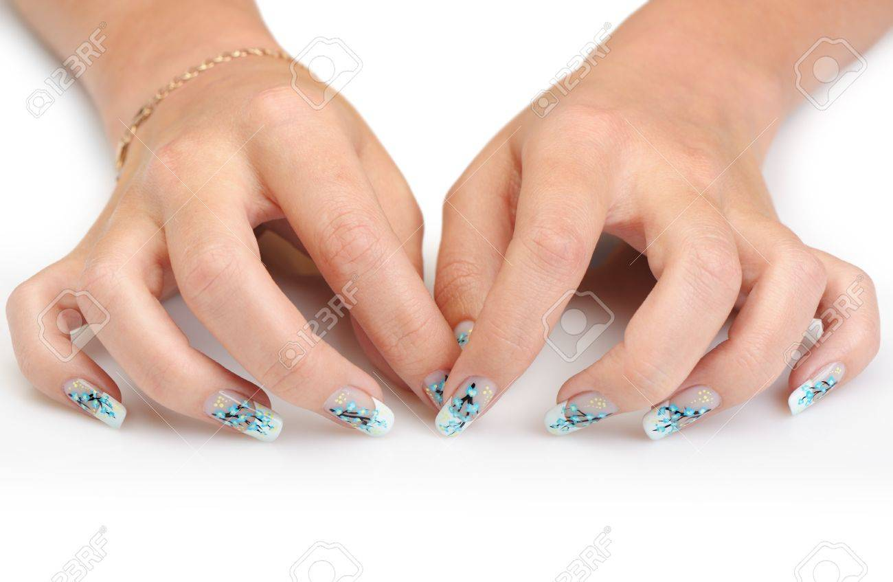 Female hands with manicure close up. Drawing of a branch with blue flowers. It is isolated on a white background. Stock Photo - 11585791