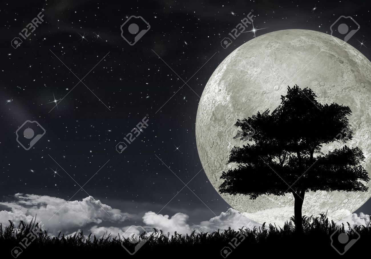 Silhouette of a tree against the big moon and the star night sky. - 12701151