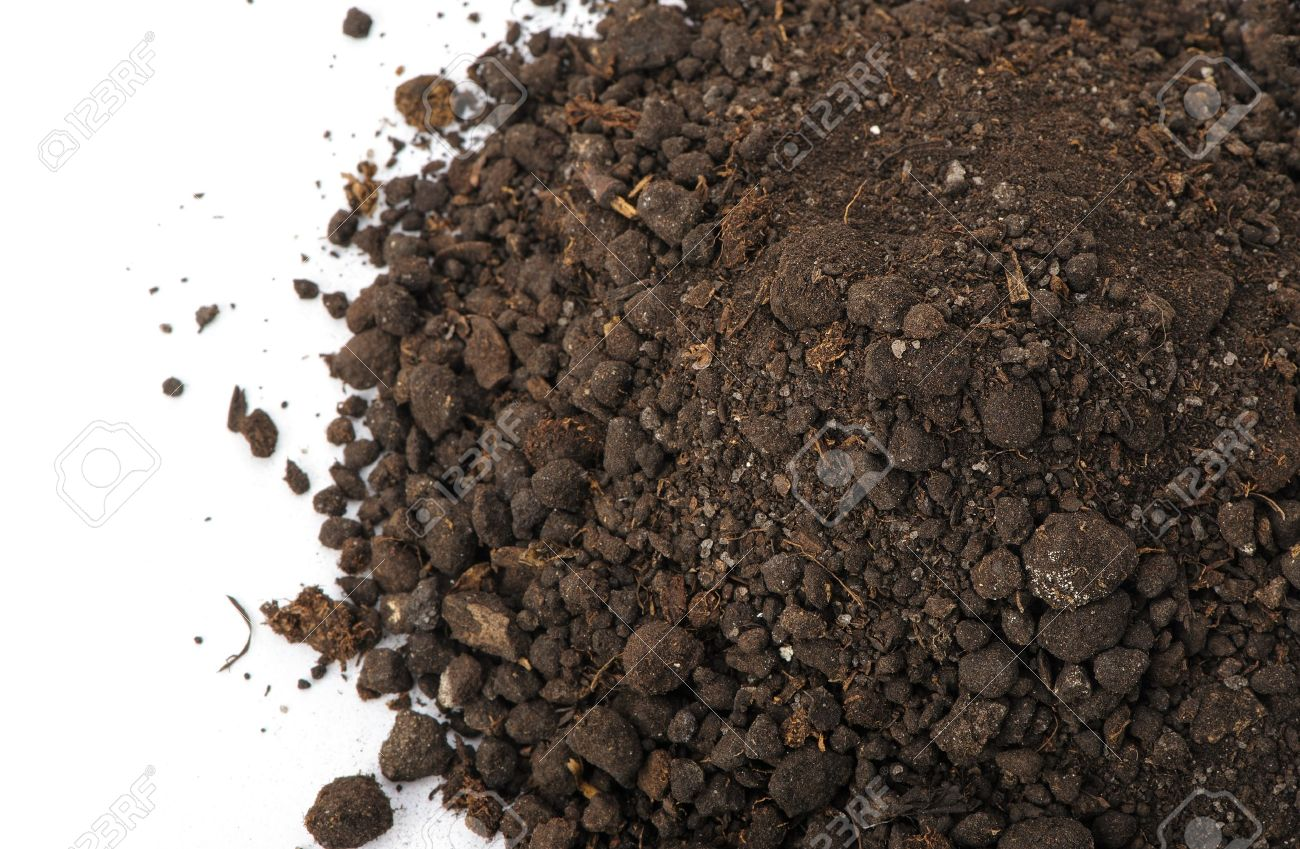 Heap dirt the top view. Isolated on white background Stock Photo - 12701289