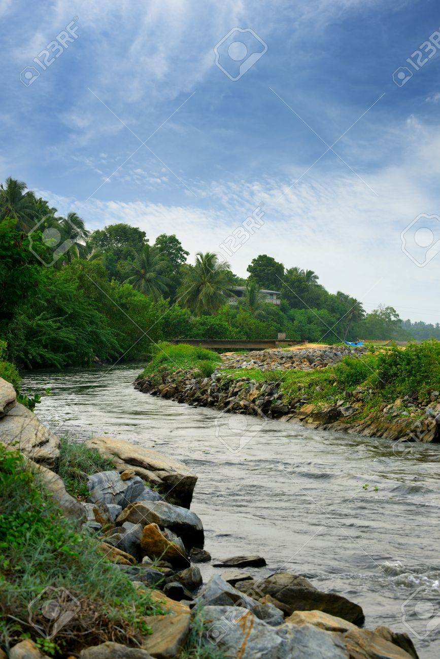 Tropical river . The Country Sri Lanka Stock Photo - 17581609