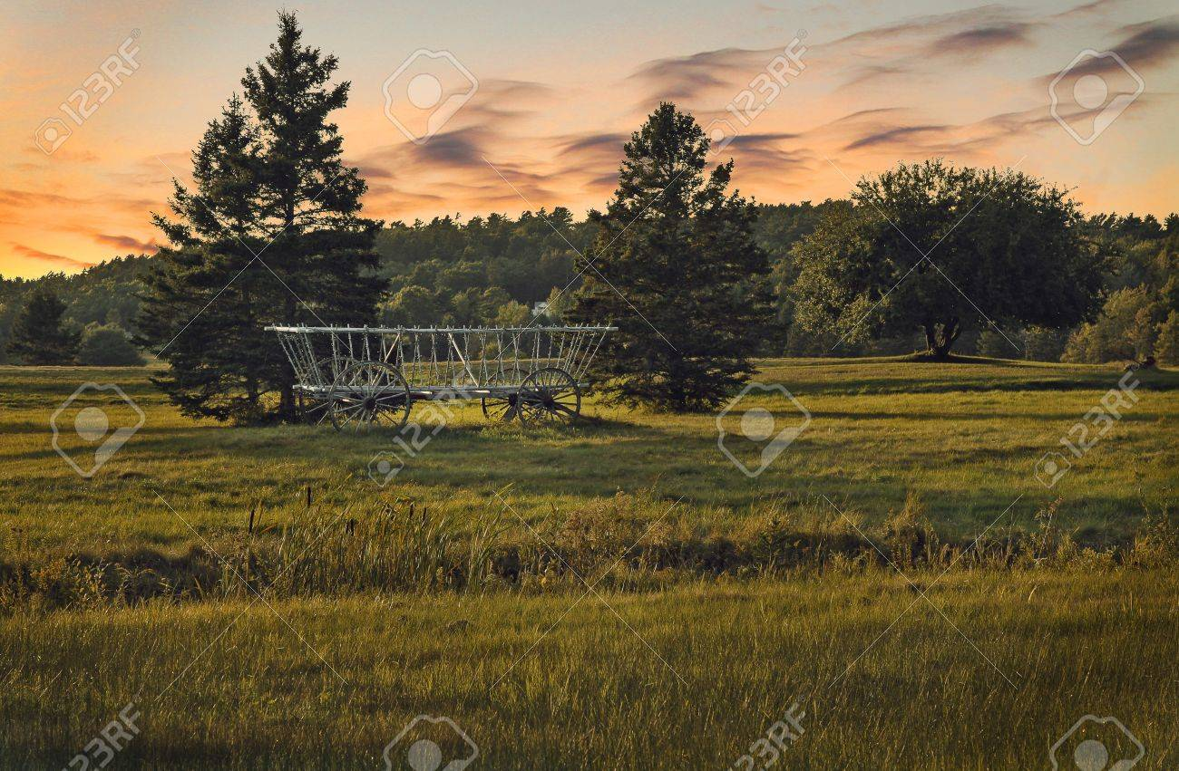 abandoned horse drawn carriage in a forest at sunset Stock Photo - 17347165