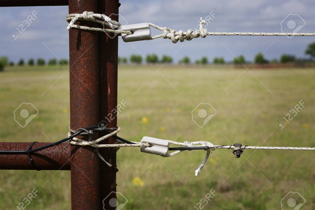 Farming: fragment of professionally installed electric fence, close up - 76390383