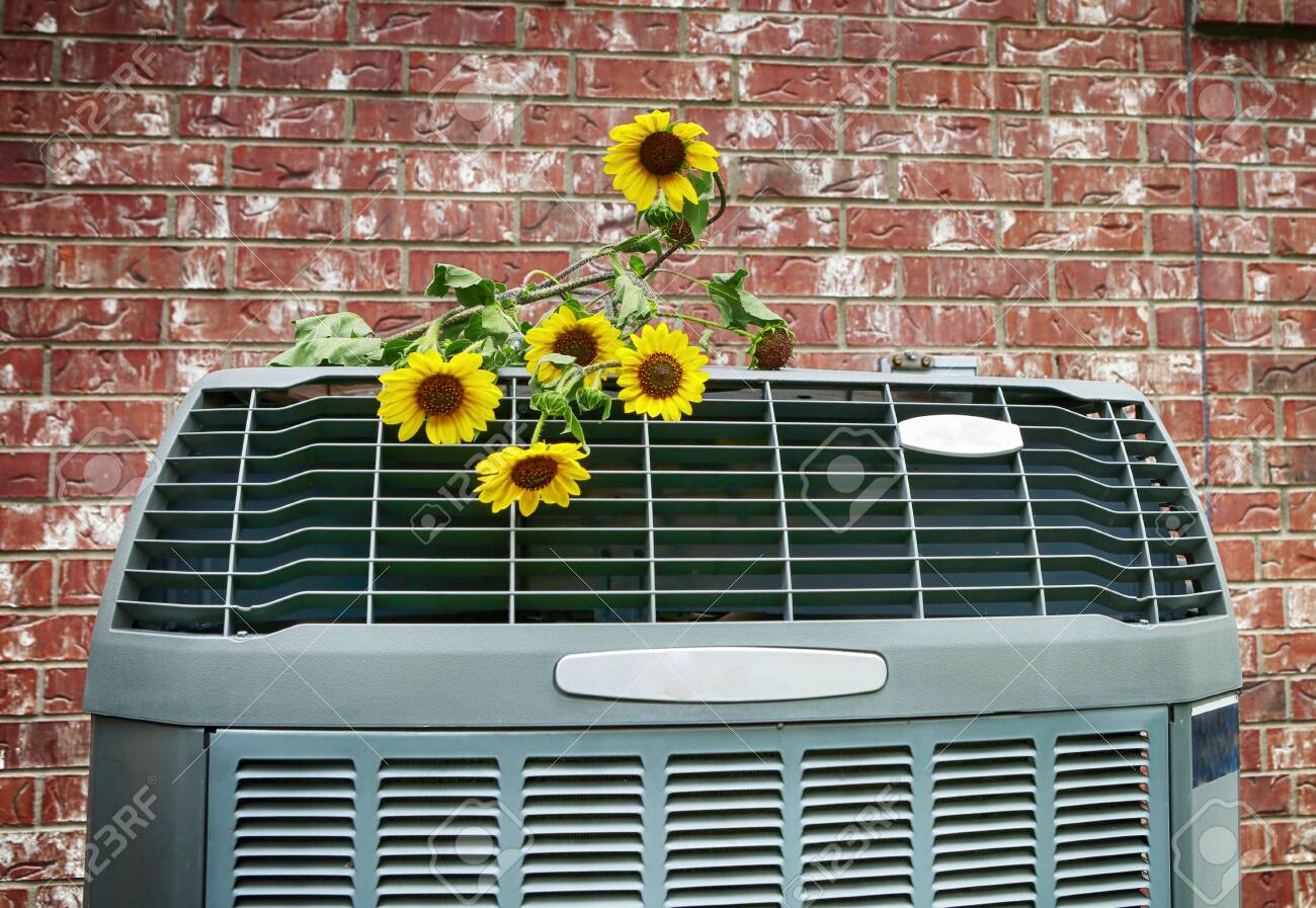 Close up of modern high efficiency air conditioner with wild yellow flowers. Bright HD image. - 150485829