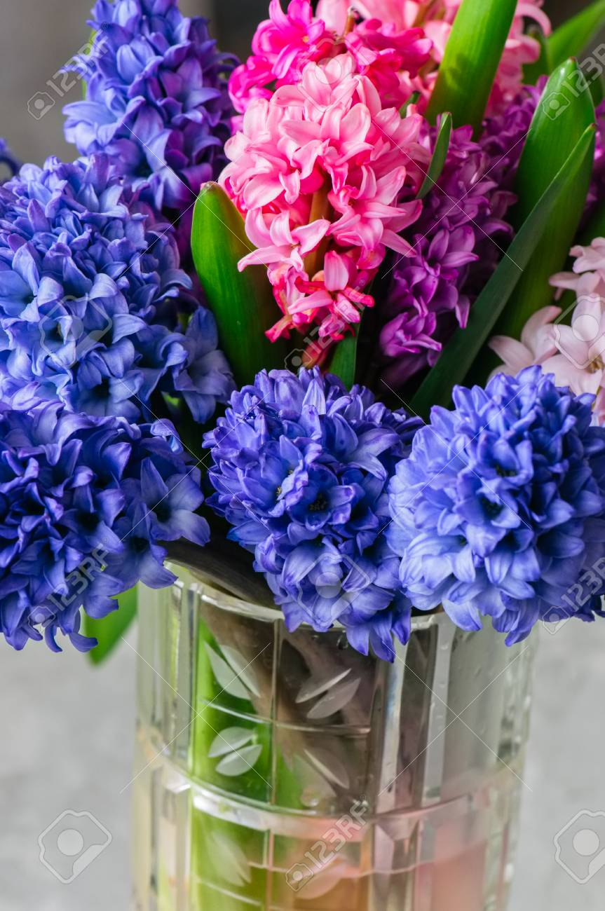 Bouquet of hyacinth flowers in vase close up stock photo picture bouquet of hyacinth flowers in vase close up stock photo 99662906 izmirmasajfo