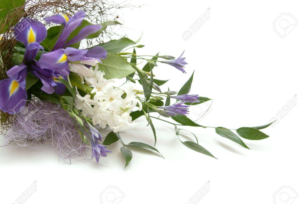 Bouquet of flowers with irises and hyacinth stock photo picture bouquet of flowers with irises and hyacinth stock photo 2245537 dhlflorist Choice Image