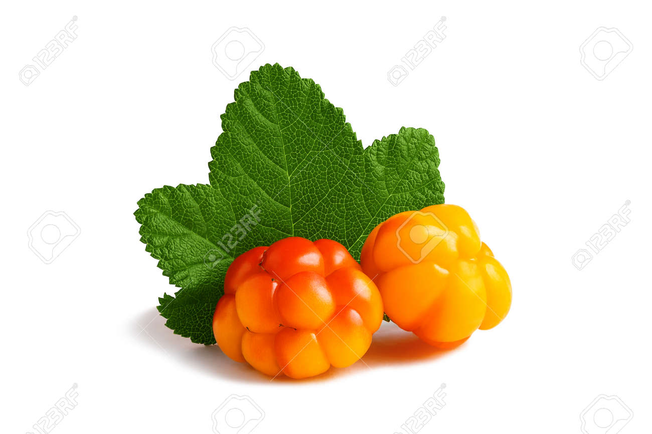 Two cloudberries with a leaf isolated on a white background with clipping path with and without shadow - 170577192