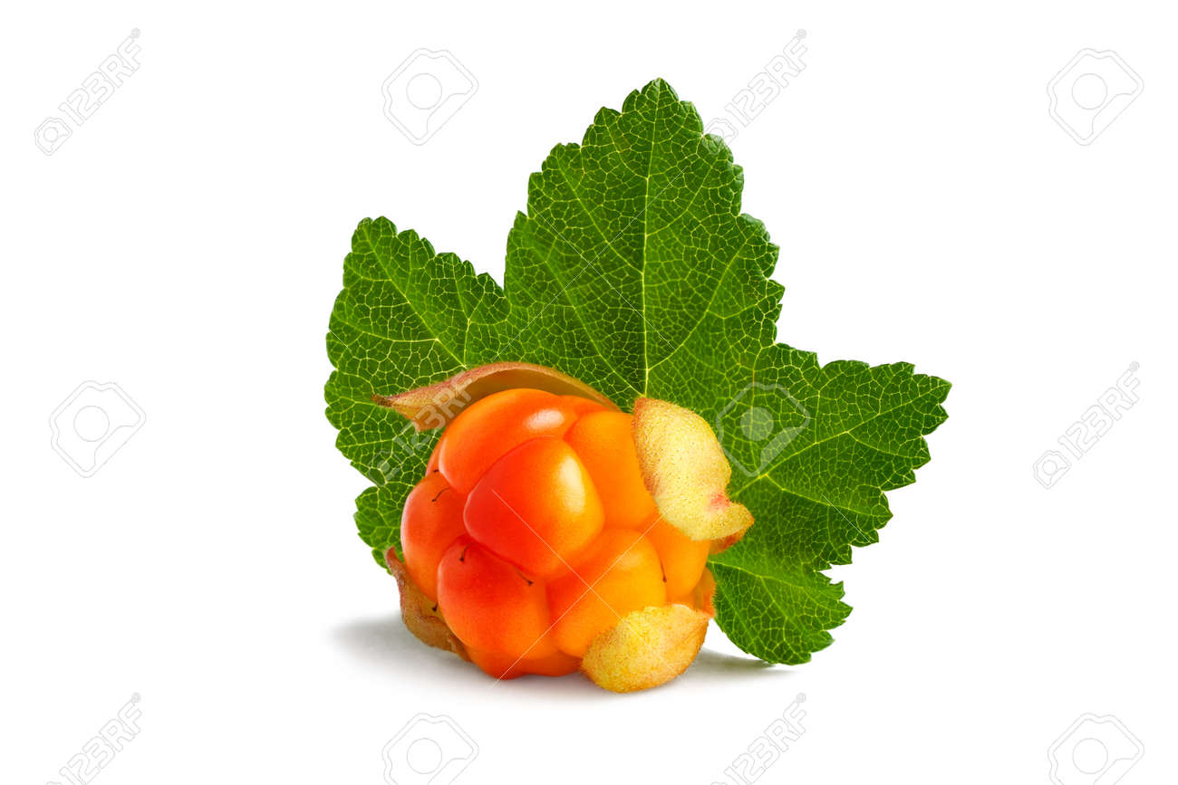 Cloudberry with leaf isolated on white background - 170093324