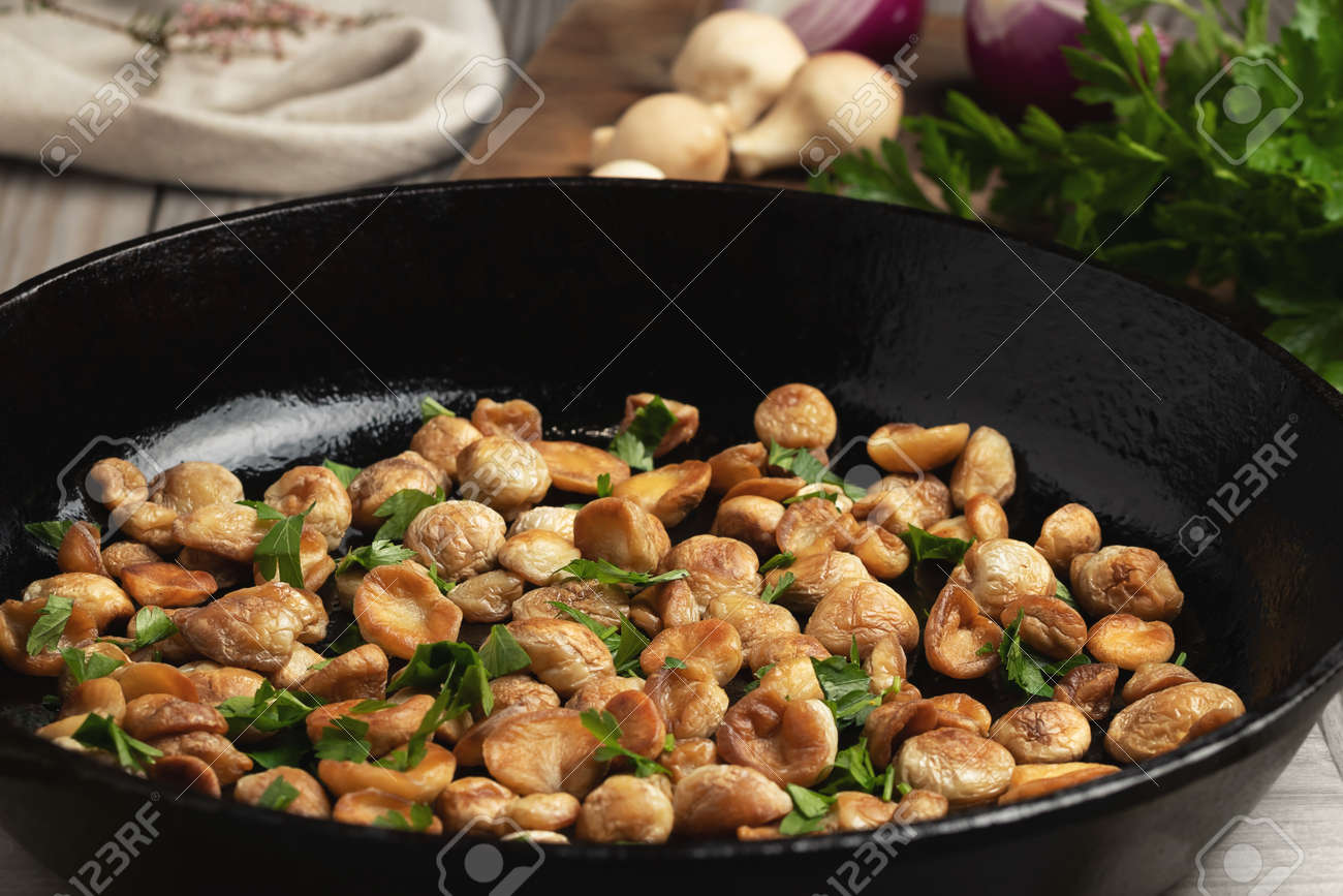 Cooking edible puffball mushrooms. Fried mushrooms in a cast iron pan - 170577251