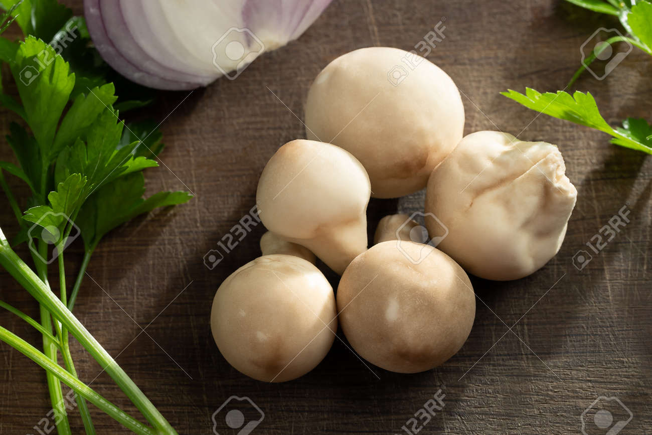 Cooking edible puffball mushrooms. Several whole mushrooms on a cutting board - 170552107