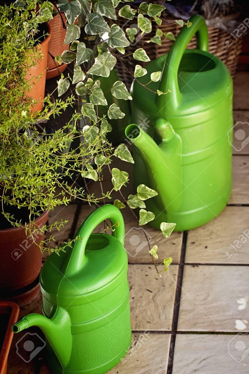 Terrasse D 39 Ete Avec Une Belle Plante En Pot Et De Plantes D 39