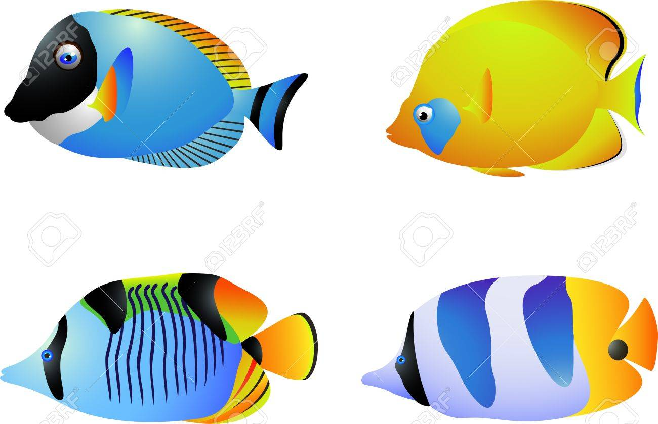 vector illustration of Tropical fish collection Stock Vector - 14805499