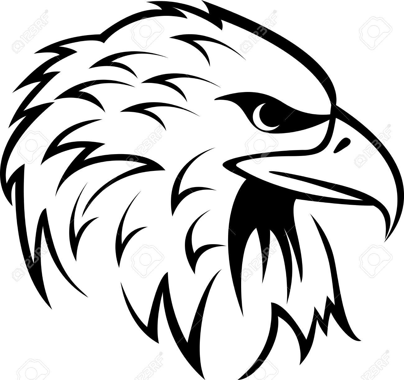 Vector Illustration Of Eagle  Eagle Head Vector