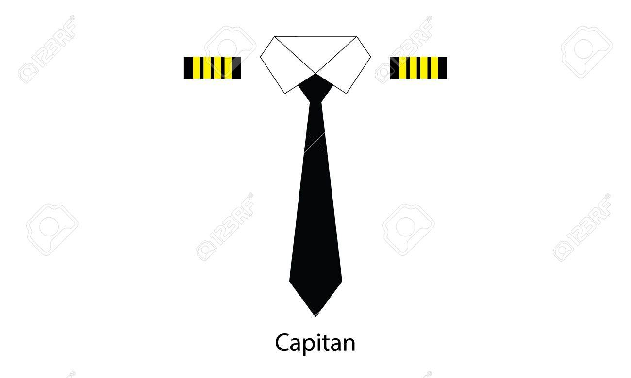 capitan airplane Stock Vector - 19757437