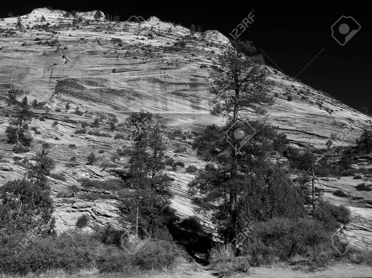 The zion national park in utah usa in black and white stock photo 1483326