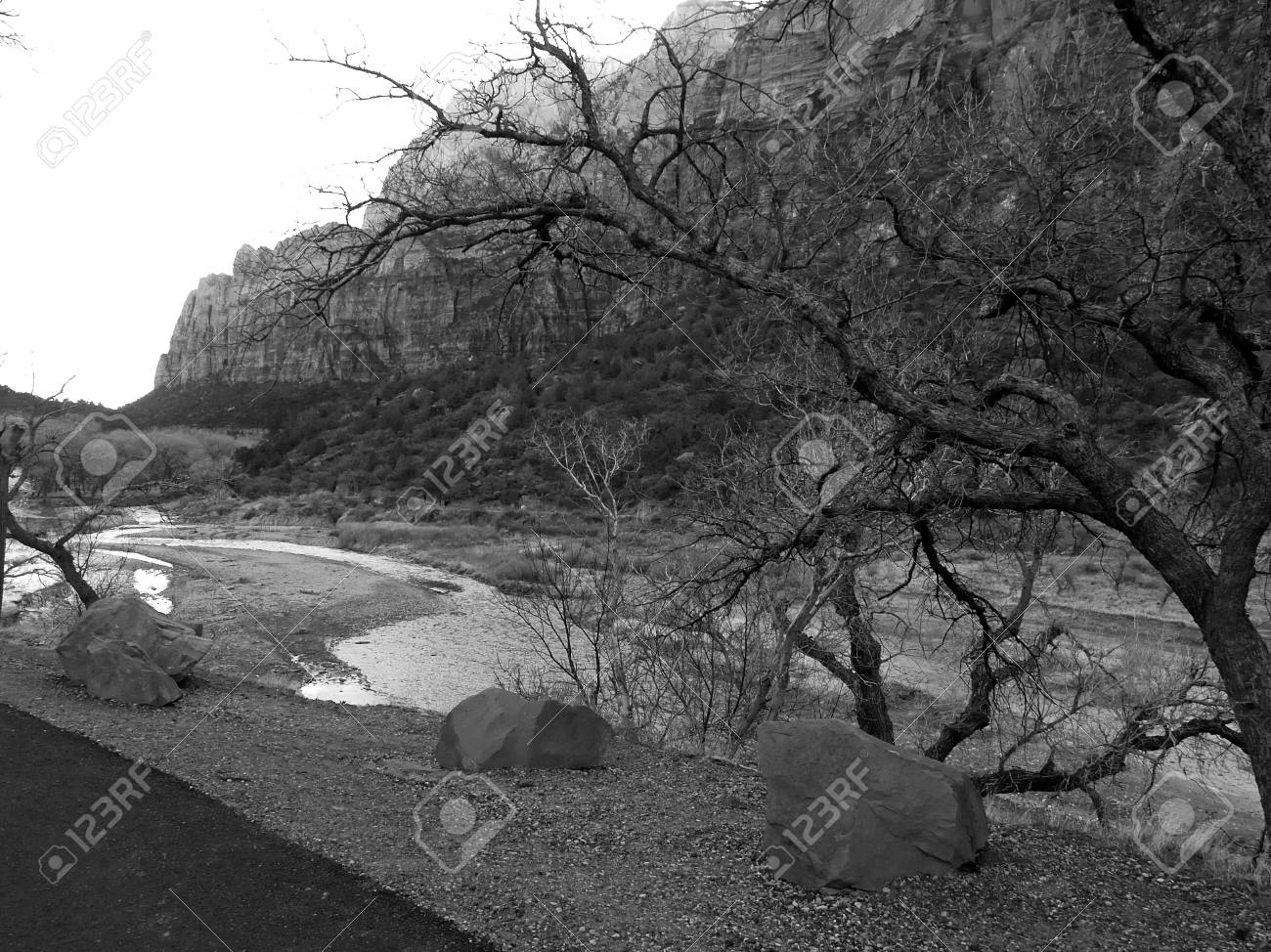 The zion national park in utah usa in black and white stock photo 1483289