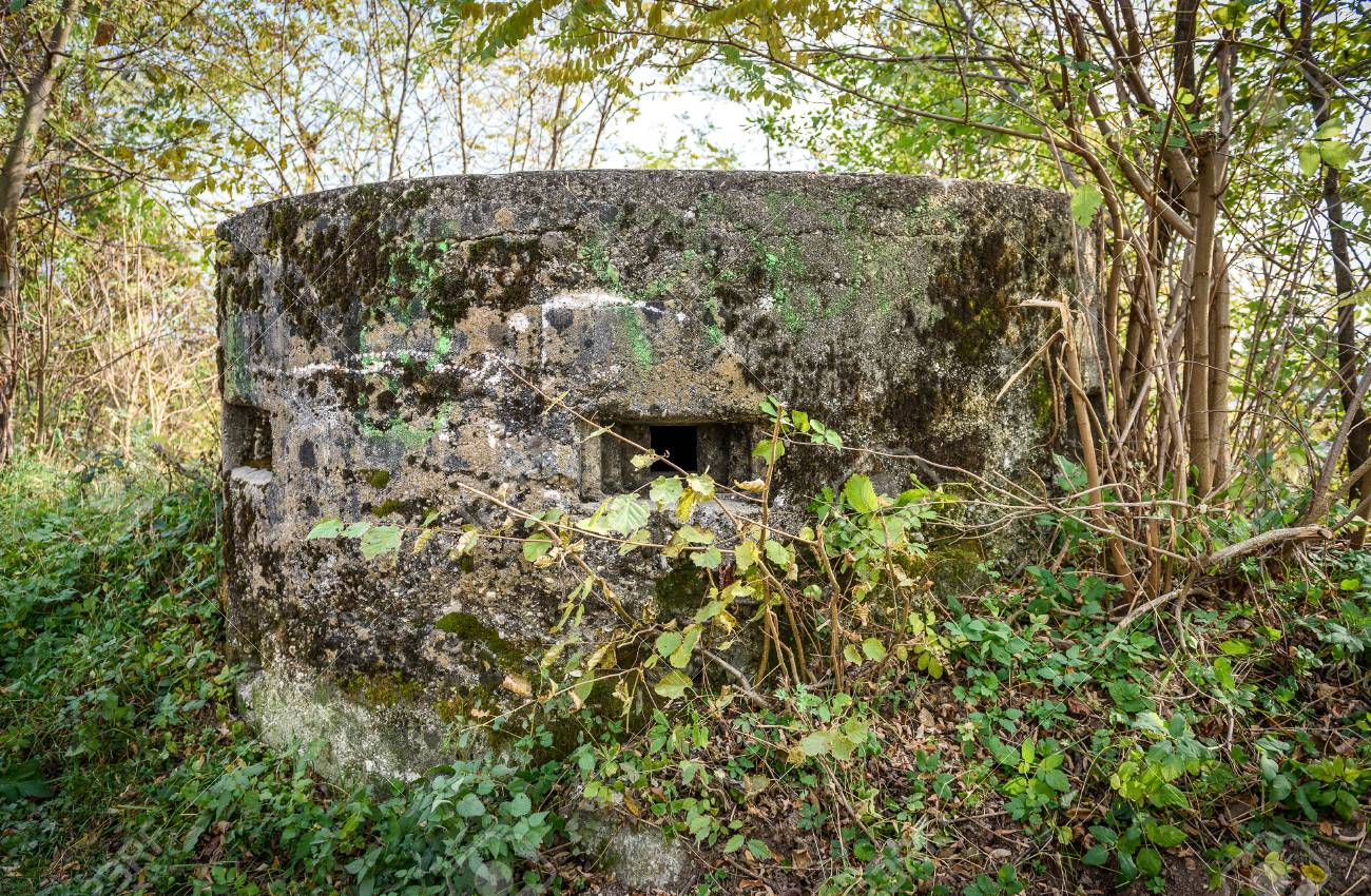 Abandoned world war army bunker covered with moss in forest