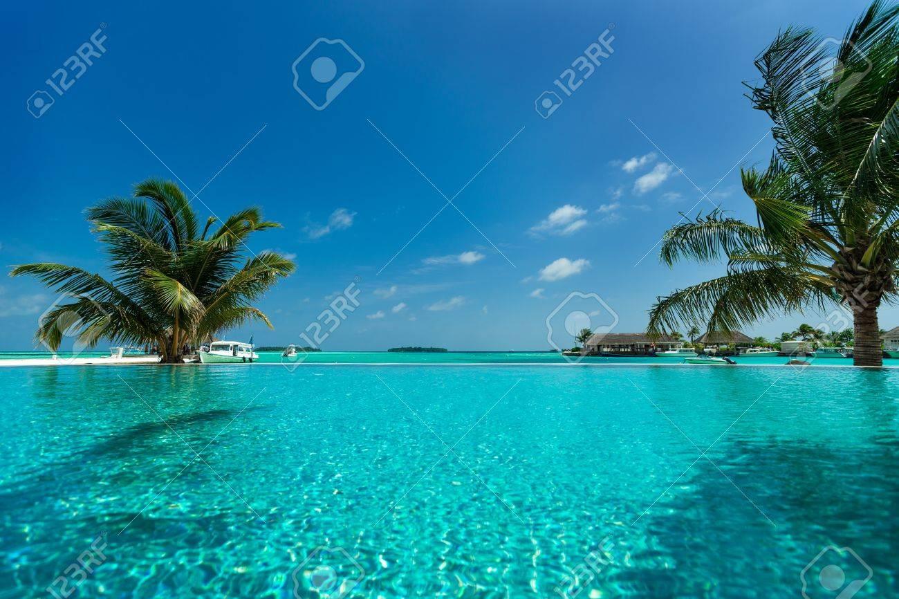 Tropical beach and pool - 20712864