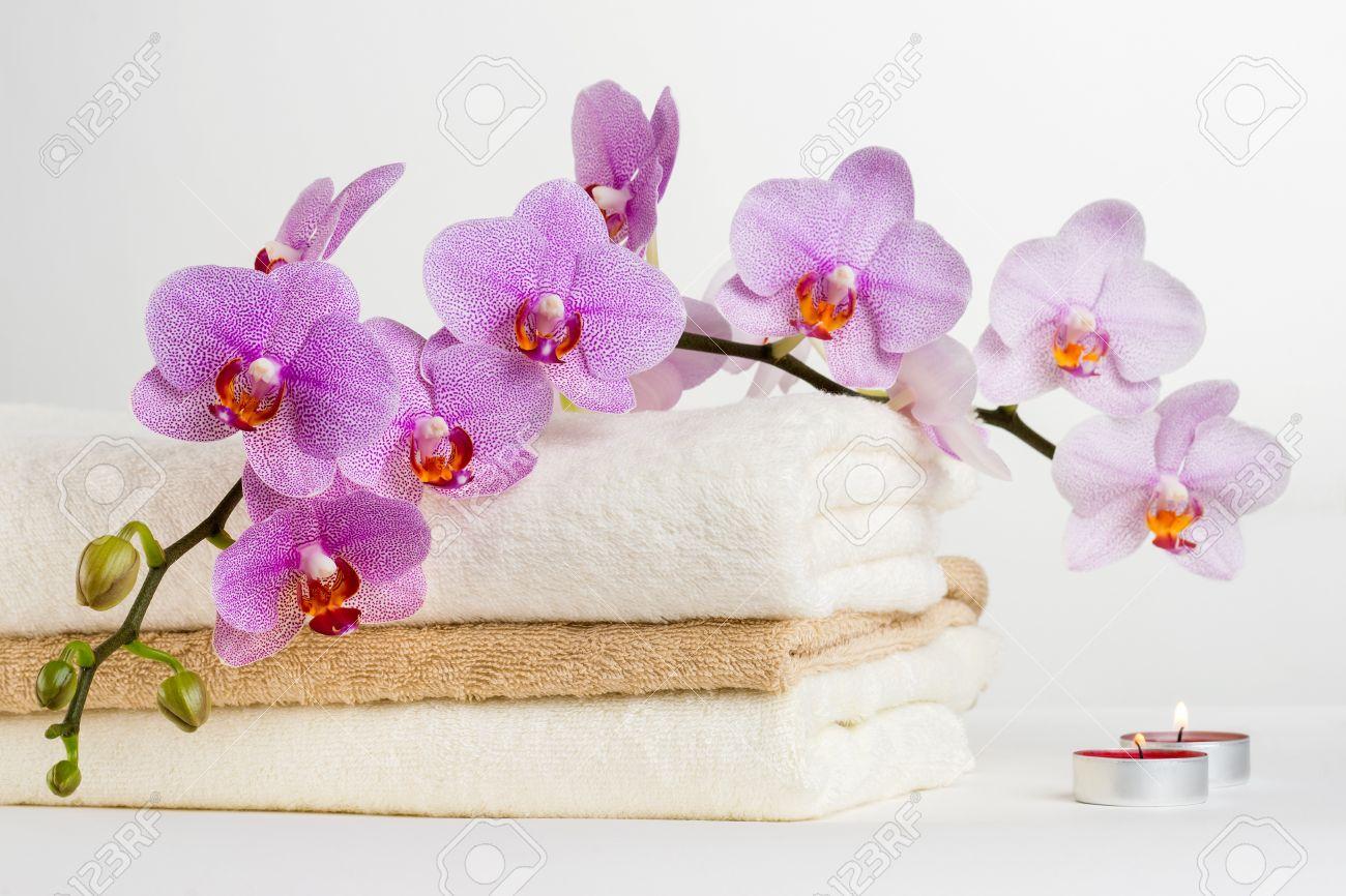 Spa wellness blumen  Kur-und Blumen Orchidee Spa-Behandlung - Entspannung Mit Kerzen ...