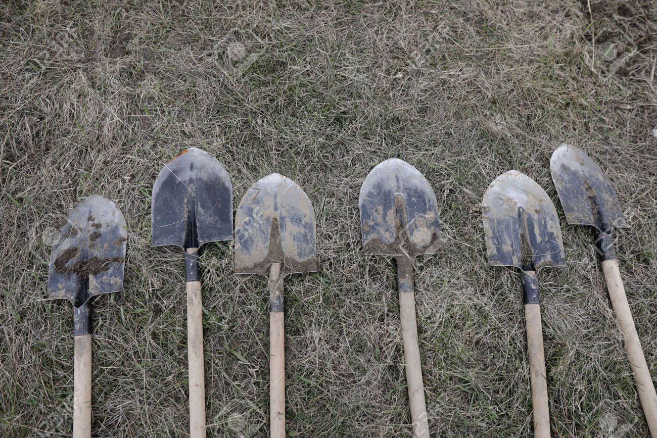 Shallow depth of field (selective focus) details of dirty shovels during a tree plantation. - 166157933