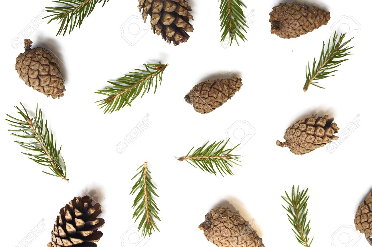 New year's background concept. Texture of pine cones and spruce branches. For Christmas design. Isolated background. - 146283963