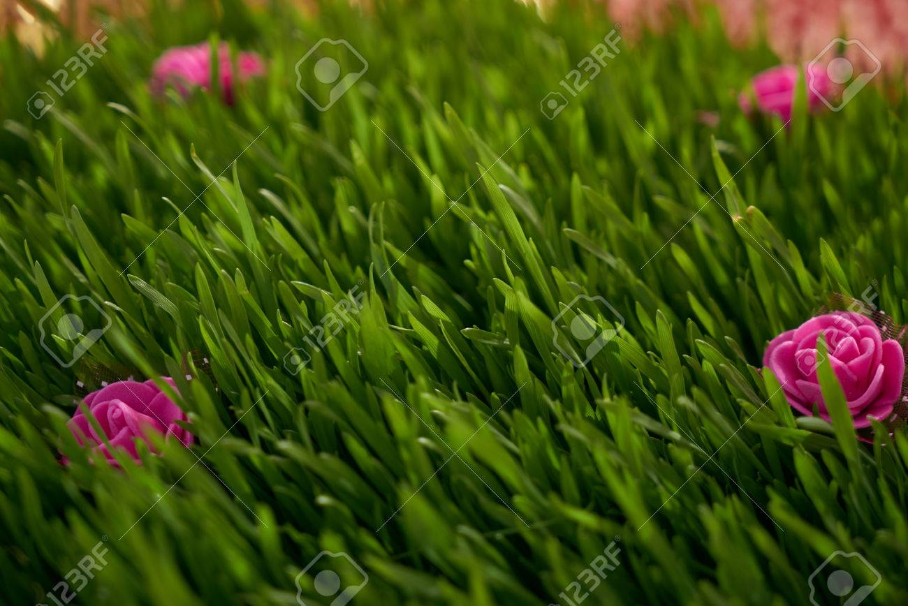 Vibrant green grass close up with pink flowers stock photo picture stock photo vibrant green grass close up with pink flowers mightylinksfo