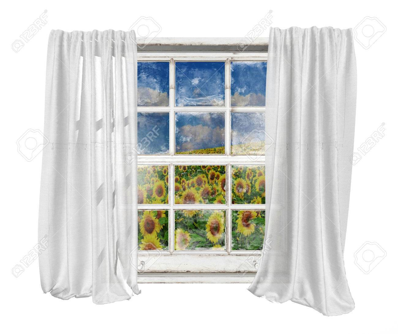 Royalty free or white curtain background drapes royalty free stock - Old White Vintage Window With White Curtains Isolated On White Background Seeing Sunflowers Field And Cloud