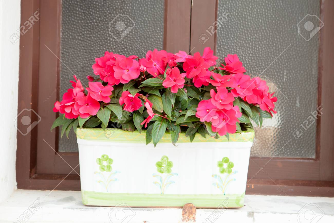 Beautiful windows with a pot and many pink flowers stock photo beautiful windows with a pot and many pink flowers stock photo 44690032 mightylinksfo