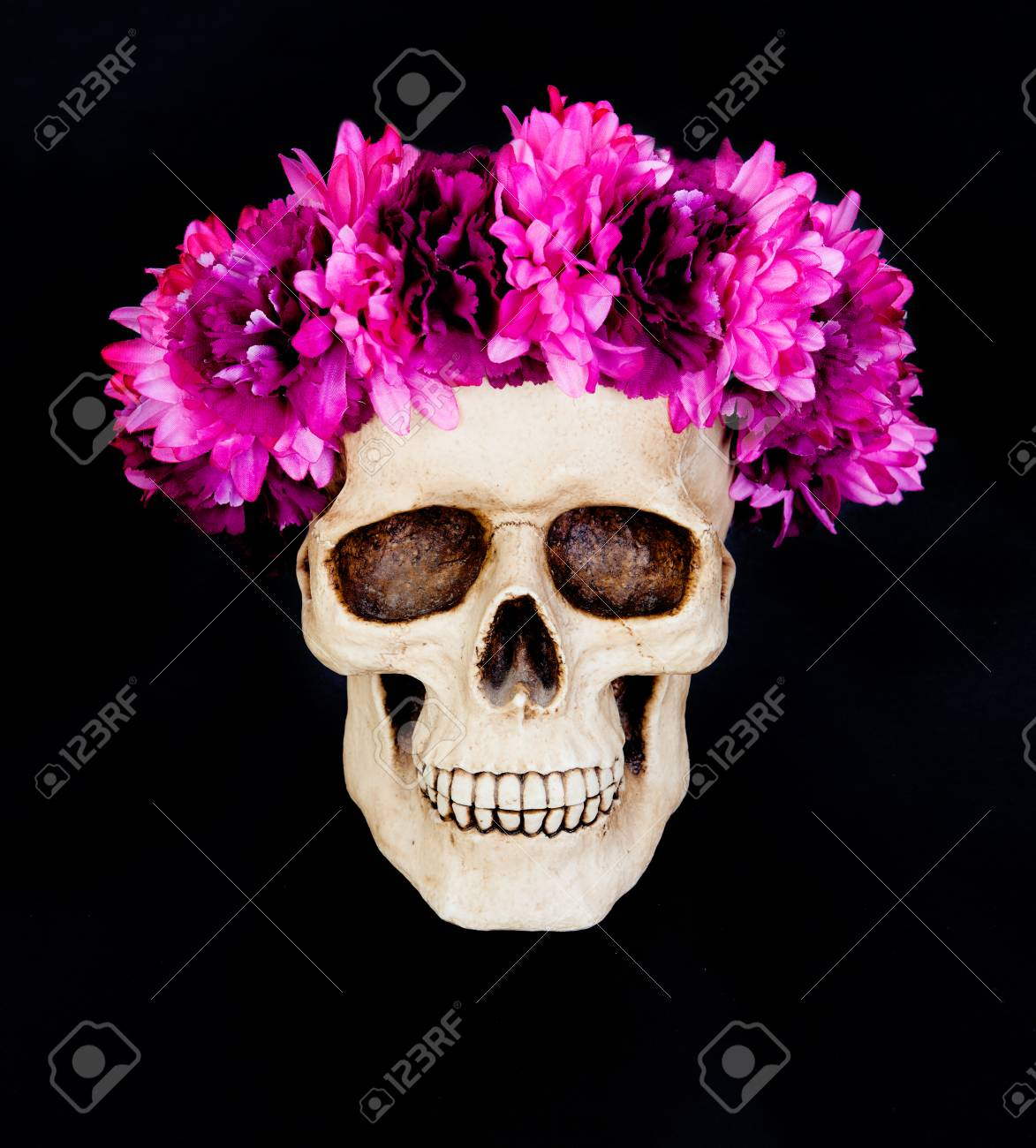 Skull with a wreath of pink flower isolated on a black background skull with a wreath of pink flower isolated on a black background stock photo 87547585 mightylinksfo