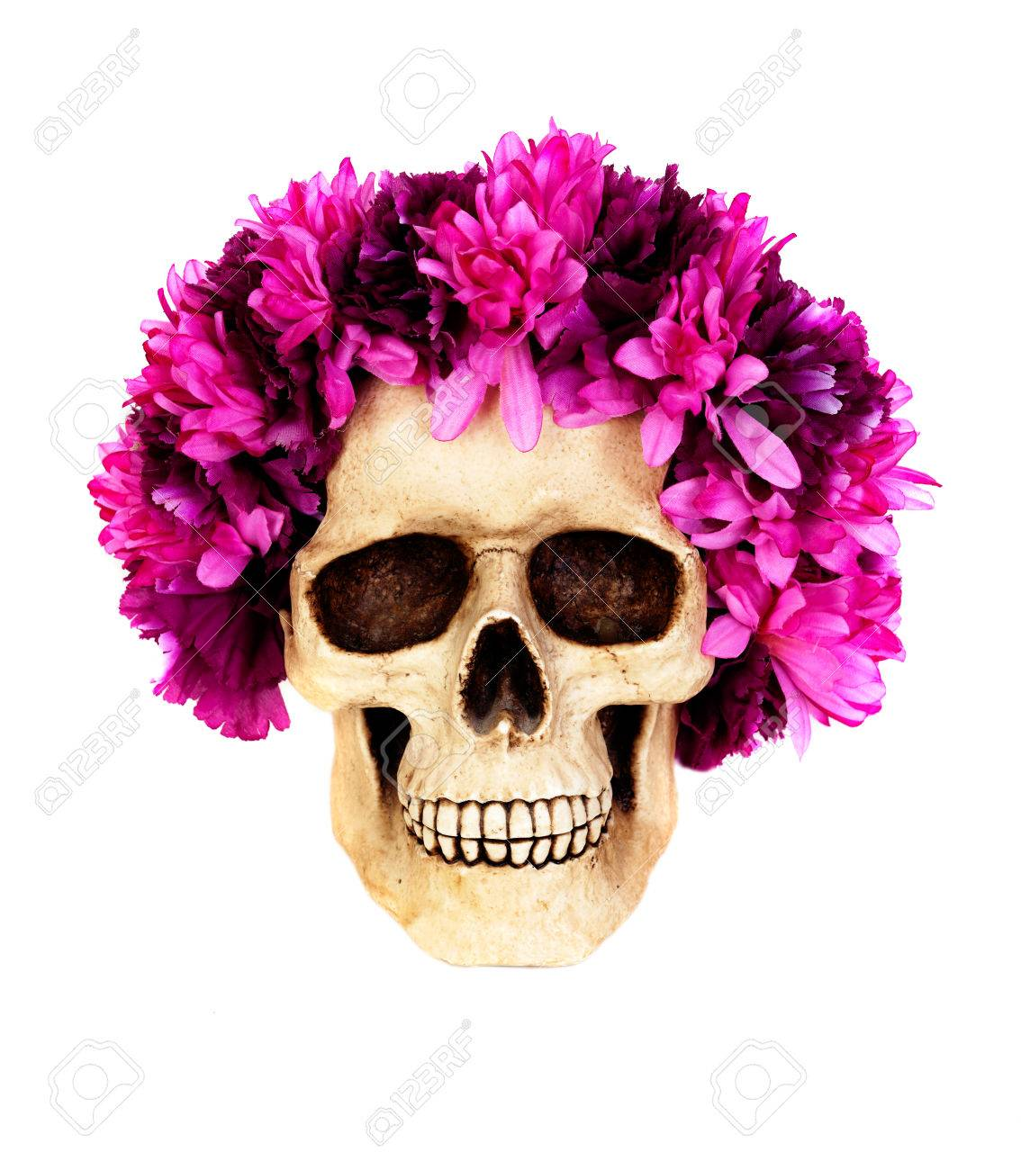 Skull with a wreath of pink flower isolated on a white background skull with a wreath of pink flower isolated on a white background stock photo 87417780 mightylinksfo