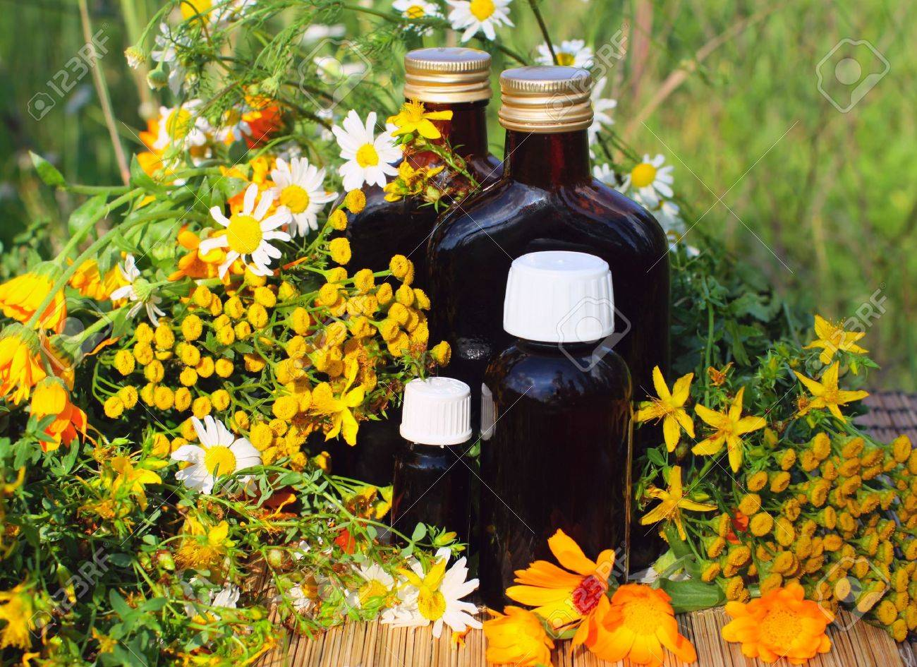 Medical herbs with aromatherapy essential oil and tincture in glass bottle. Stock Photo - 10097116