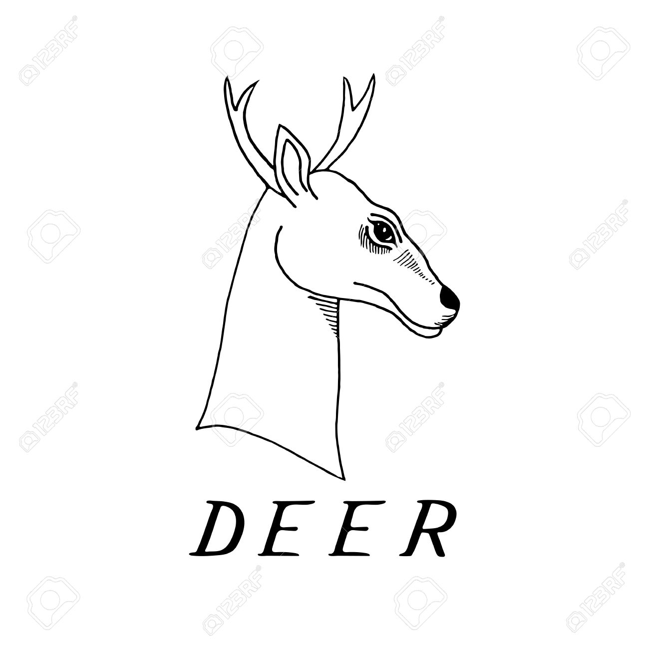 Hand draw a deer head with antlers to use for printing on t shirts