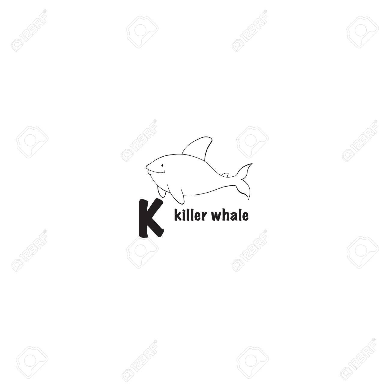 Killer Whale Coloring Page Isolated On White Background