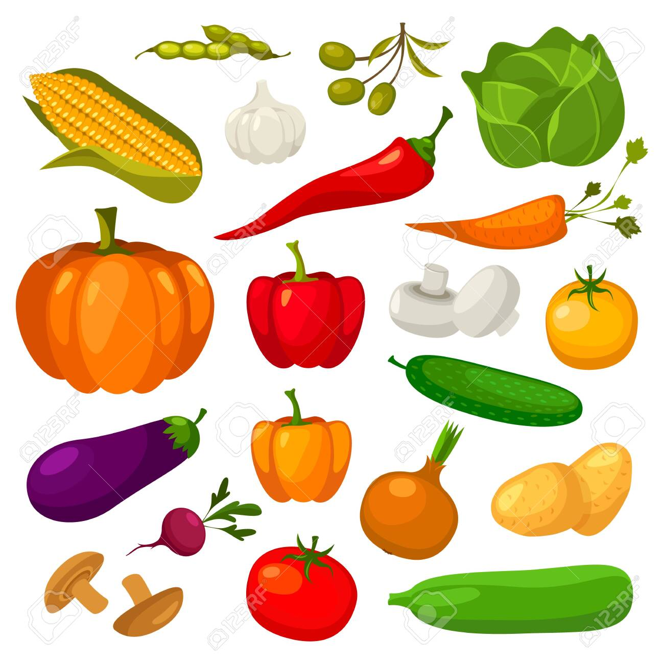 Vegetables flat icons, vector veggies, vegetarian salad and cooking ingredients set. Organic bio farm vegetables cabbage, pepper and garlic, beans, pumpkin and cucumber, potato, beans and mushrooms - 142881464
