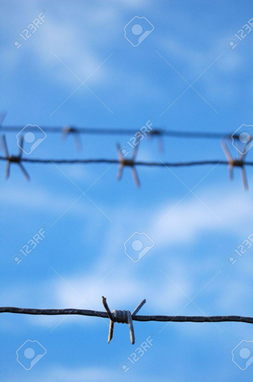 Barbed Wire Stock Photo - 8019988