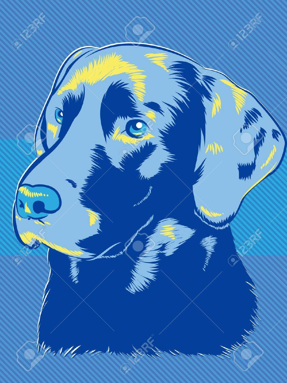 Labrador Dog Pop Art Style Stock Vector - 14358485